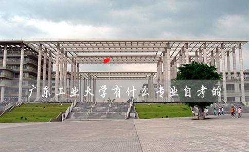 广东工业大学有什么专业自考的