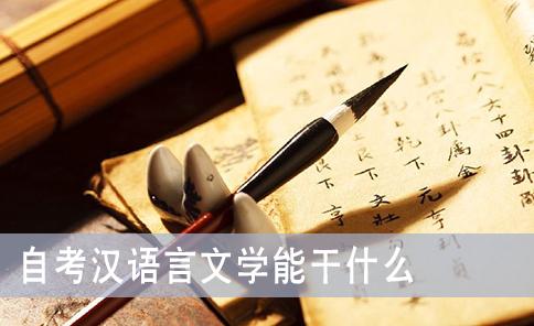 自考汉语言文学能干什么