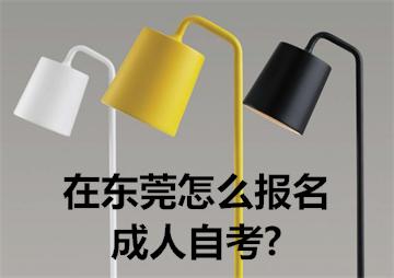 在东莞怎么报名成人自考?